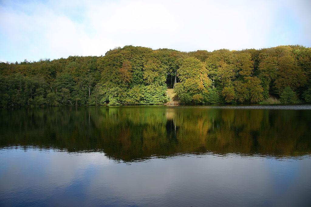 Herthateich - Jasmunder Nationalpark