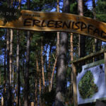Engang zum Walderlebnispfad